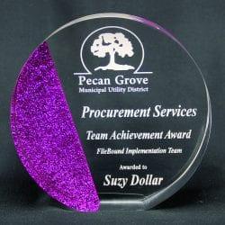 Circle Cast Glitter Award