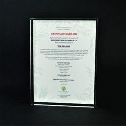Full Color Printed Award Example 4