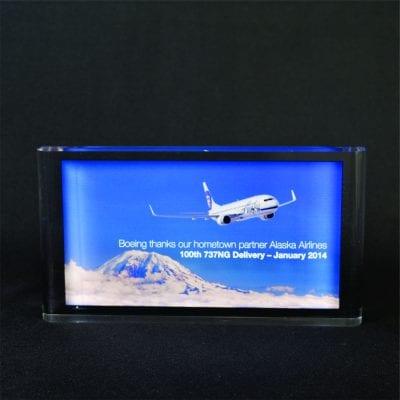Full Color Printed Award Example 11