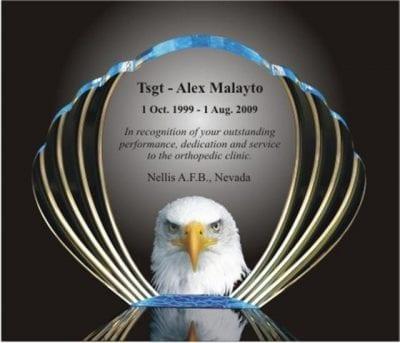 Acrylic Eagle Shaped Award