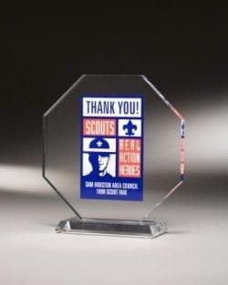 MOAZ06 Octagon Award