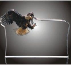 LANDING EAGLE Acrylic Landing Eagle Award