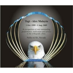 Acrylic Eagle Oval Award