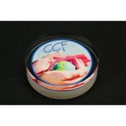 Circle Lucite Tombstone Embedment Awards