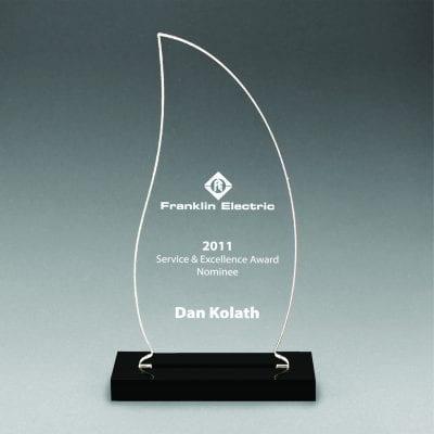CNS Acrylic Flame Award